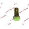 Болт пустотелый М10х1,0 (штуцер топливный) H HOWO (ХОВО) 81500070054 фото 3 Краснодар